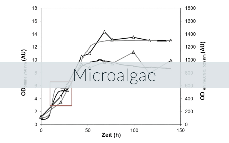 Example of a CGQ growth curve for microalgae