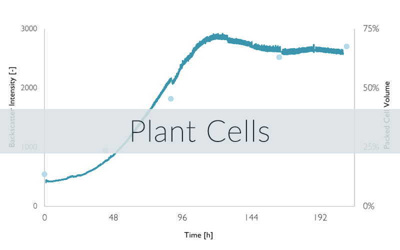 Example of a CGQ growth curve for plant cells