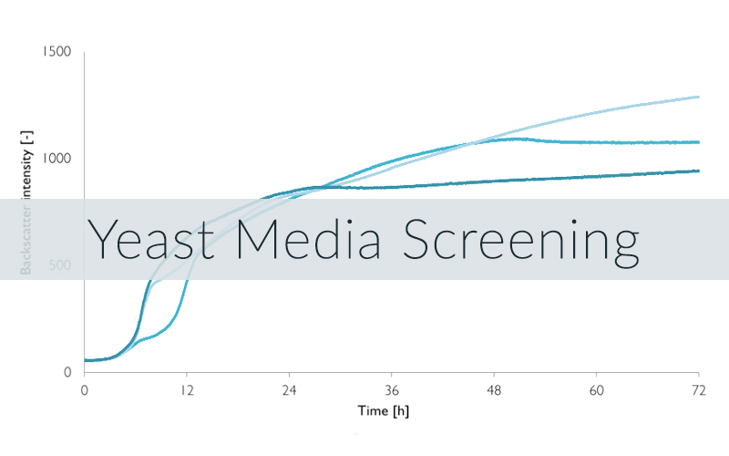 Growth curves for a yeast media screening